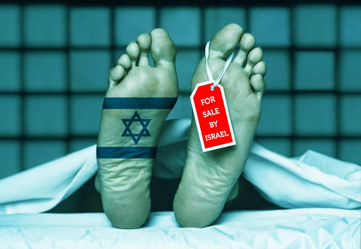 أعضاء بشرية للبيع! سماسرة إسرائيل في كل مكان